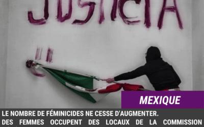 Mexique. Occupation du bâtiment CNDH, suite à un nouveau féminicide.